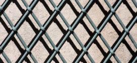 Ein hochwertiger Zaun macht Sinn